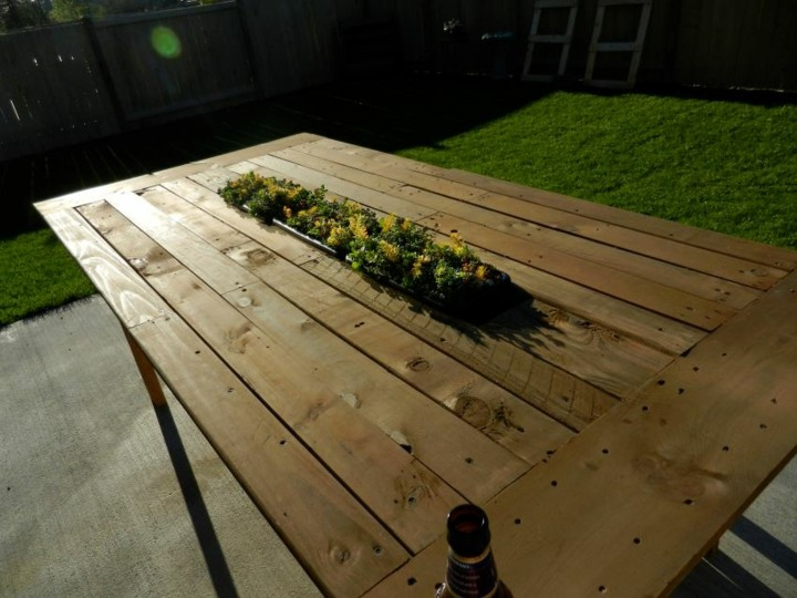 mesa colores plantas centro cesped
