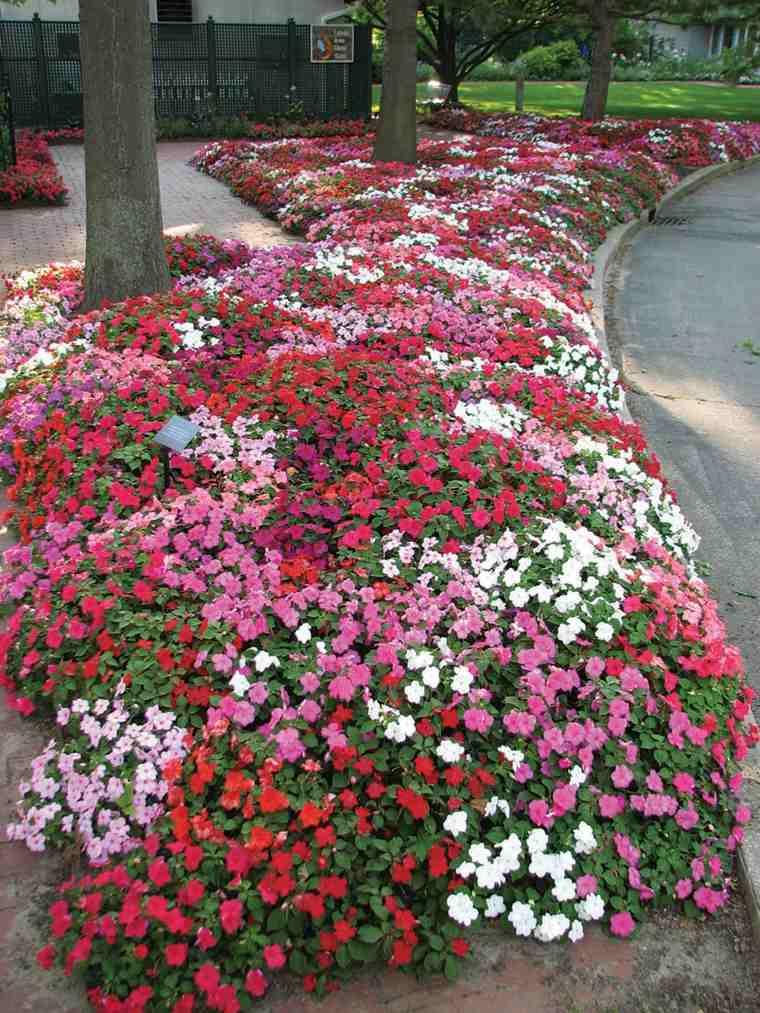 Plantas de jardin ideas para protegerlas y cuidarlas - Plantas para jardin ...