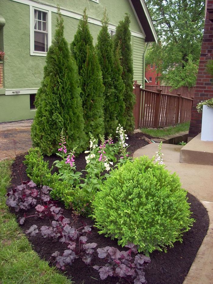 Jardines borde separador para delimitar los espacios - Pinos para jardin ...