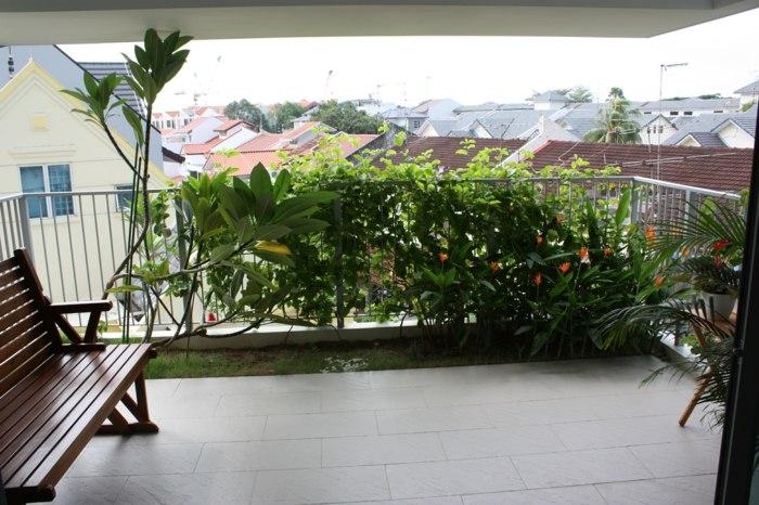plantas ubicacion creativa natural altas