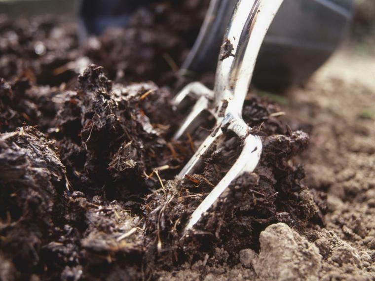 abonar terreno cultivar huertos
