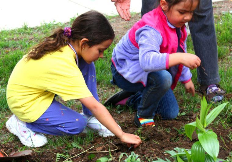 arrancar malas hierbas suelo jardin