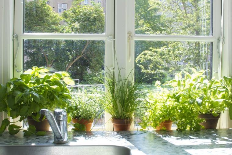 decorar ventana macetas plantas