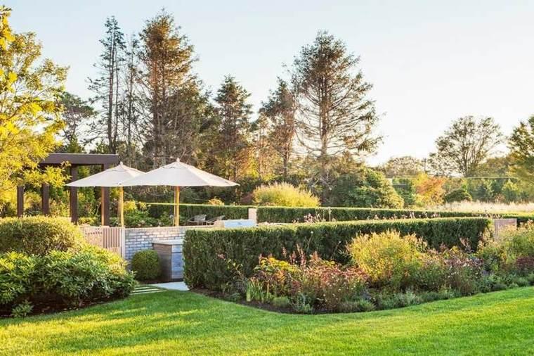 jardín moderno cesped plantas