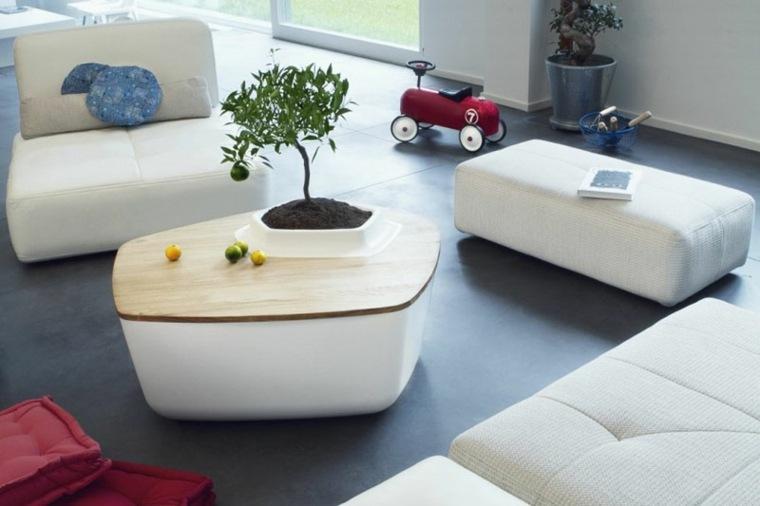 disenos de muebles de sala atractivos plantas mesita ideas
