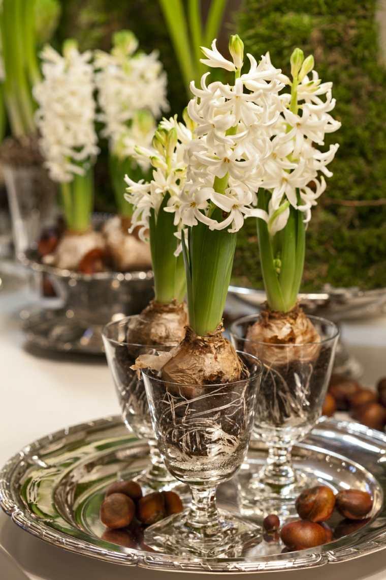 flores de primavera decorar casa jacinto blanco ideas