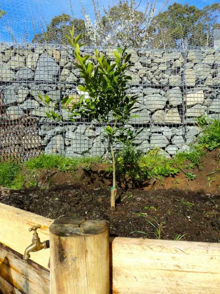 gaviones diseno moderno jardines vallas