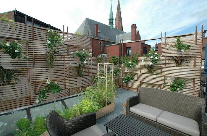 jardin vertical plantas especiales frescas fuentes