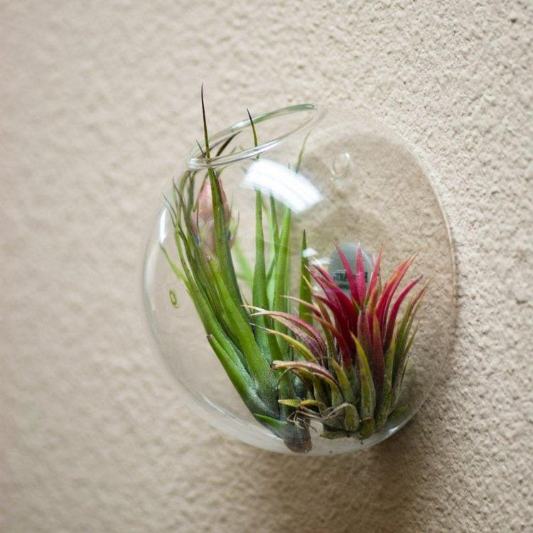 ideas elegantes efectos cristales paredes