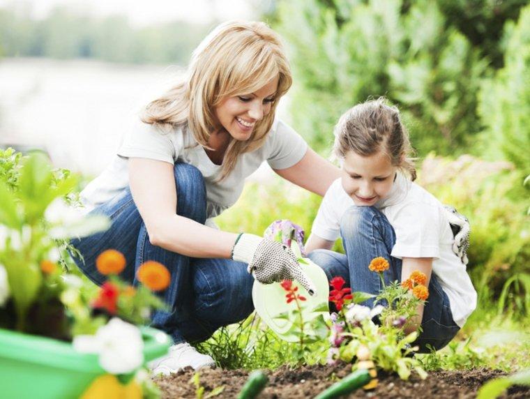 plantar especies jardín casa