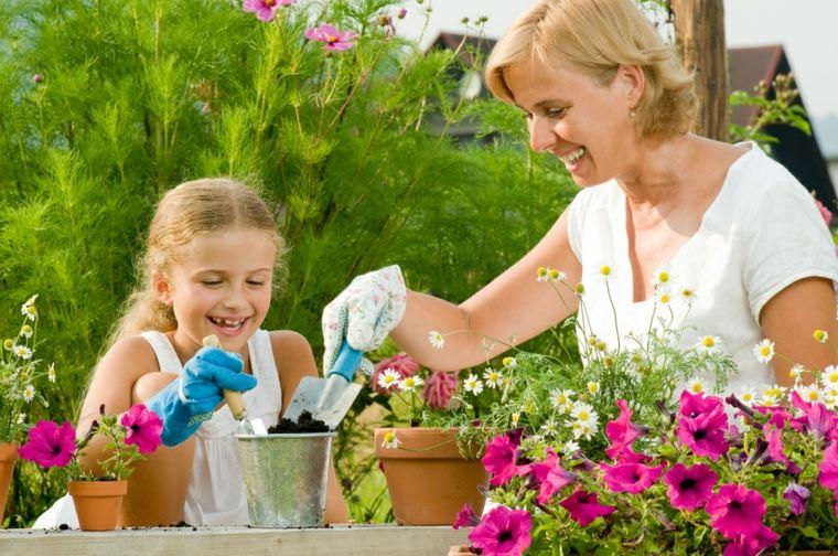 ideas sembrar flores macetas