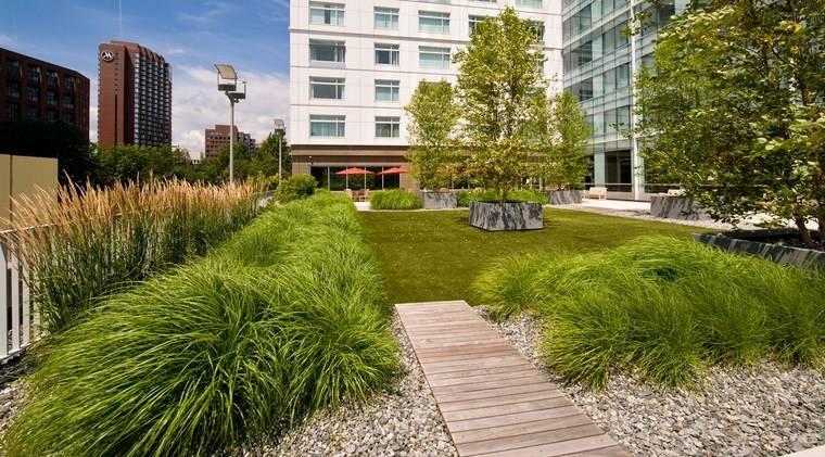 jardin japones moderno hierba japonesa ideas