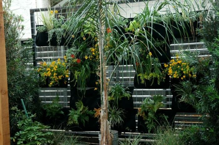 Jardin vertical plantas y soluciones para espacios privados - Macetas para jardin vertical ...