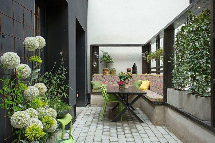jardin vertical plantas senderos spacios exoticos