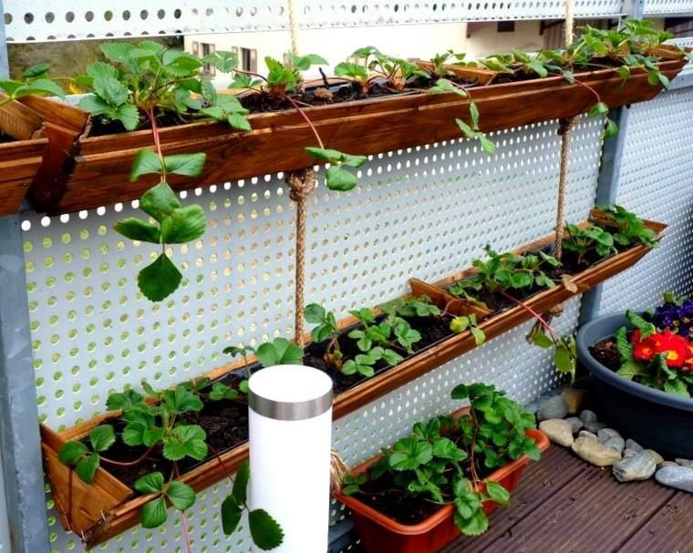 jardineras fresas terraza decorativas