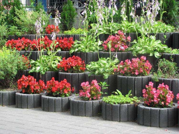 jardineria hormigon flores plnatas consejos