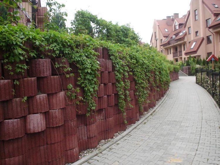 jardineria hormigon rojos contencion senderos