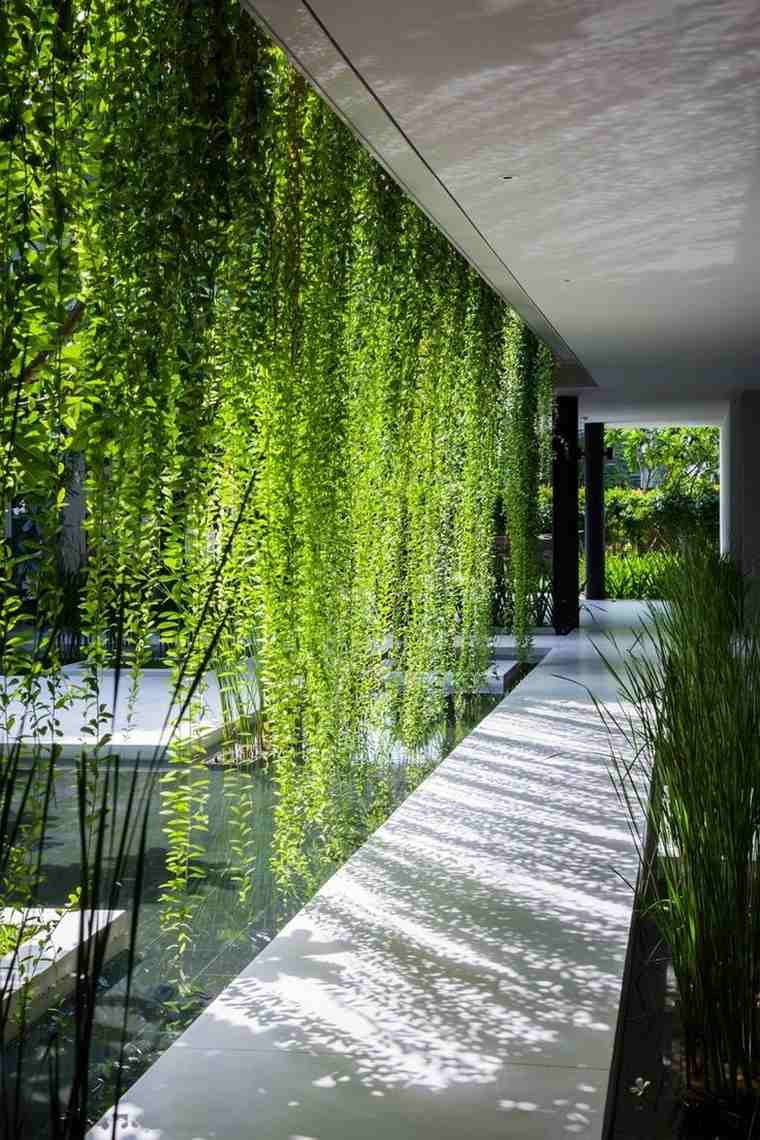 jardines japoneses modernos plantas trepadoras ideas