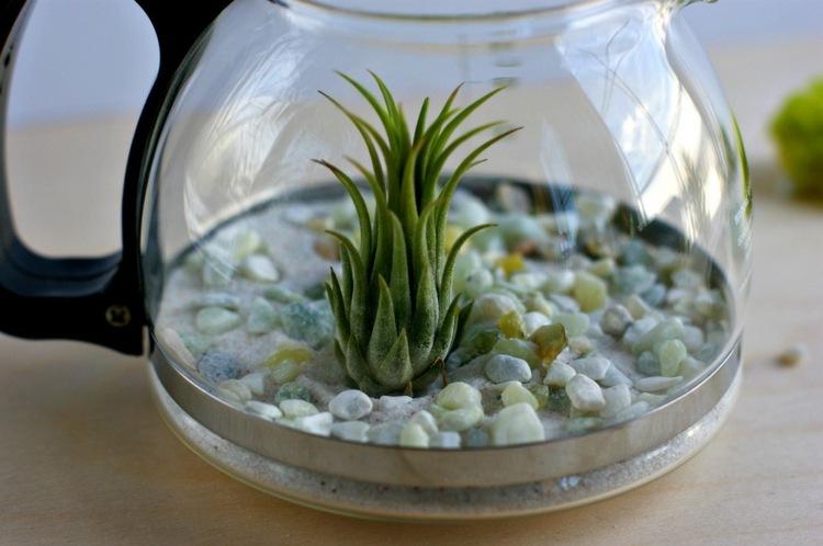 jarrones cristales diy plastico pequeñas