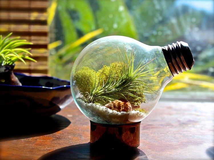 minialistas maderas luces interno bombilla