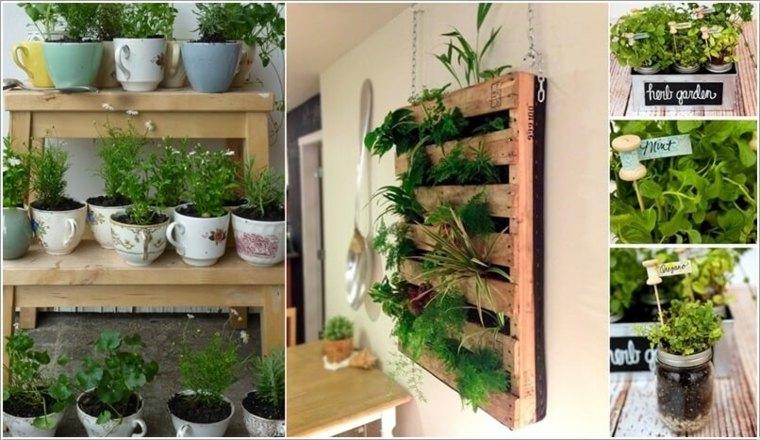 Especias Naturales Cultivadas En Tu Propio Hogar 24 Ideas