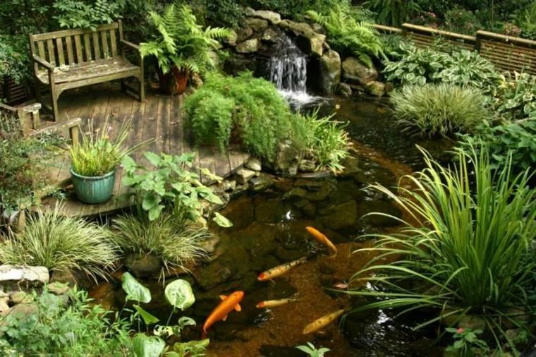 pequeñas estanques peces colores lineas