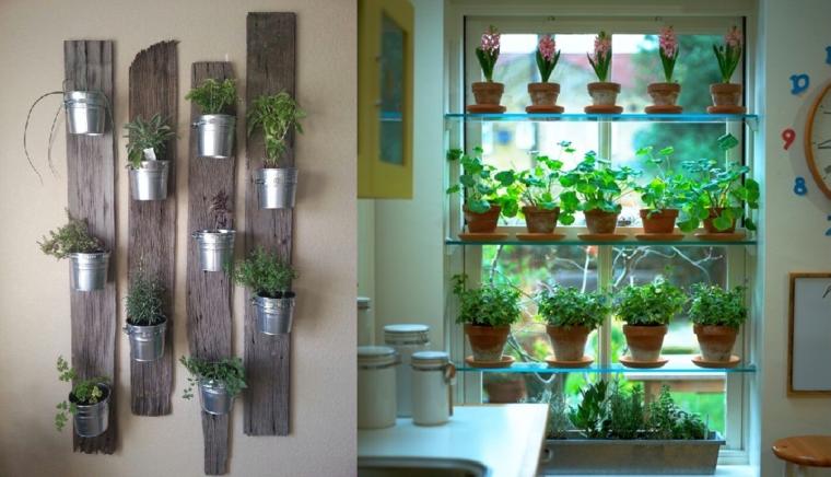plantar hierbas naturales interior