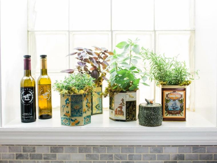 plantar hierbas latas vintage