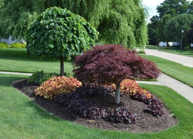 Plantas de sombra 9 opciones para el jard n for Arboles sombra jardin