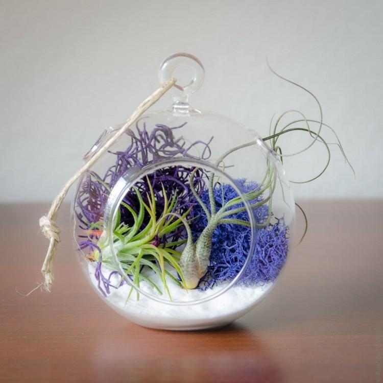 plantas diseño azules tonos efectos lineas