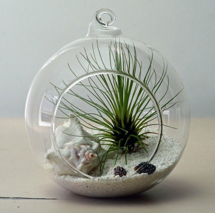 plantas diseño elegante acristalado cristales