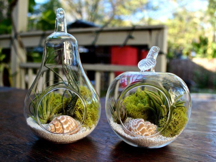plantas diseño rustico esferas caracoles