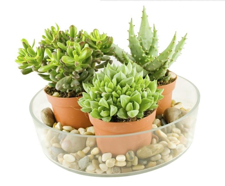primavera decorar casa plantas decorar casa ideas