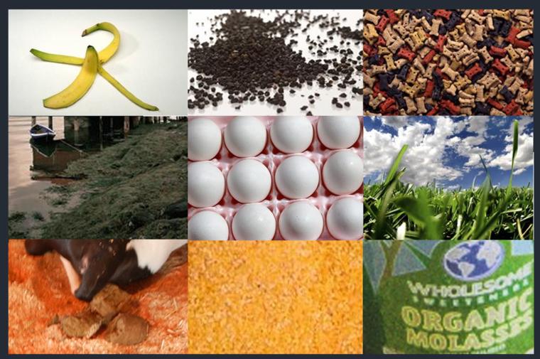 productos para hacer abono organico