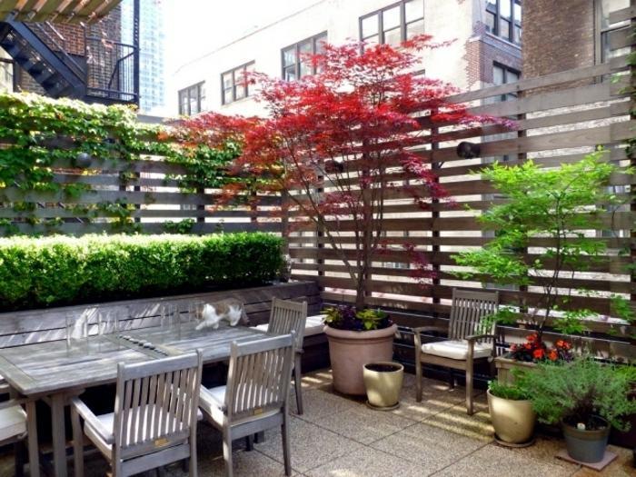 Jardin vertical plantas y soluciones para espacios privados for Jardin vertical terraza