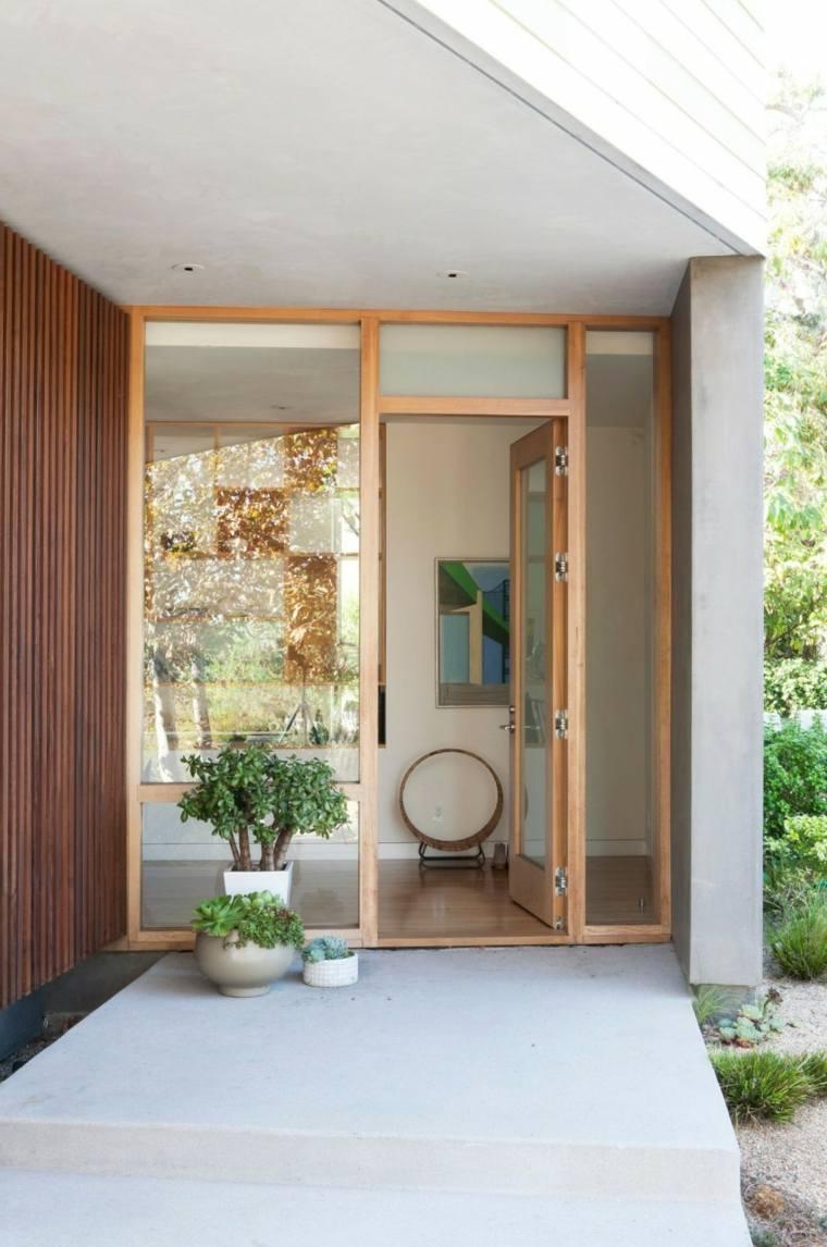 residencia contemporanea entrada macetas plantas ideas