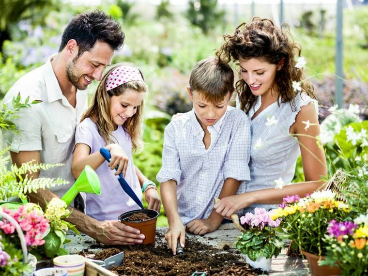 sembrar plantas familia terreno flores