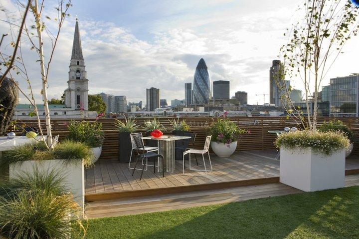 terrazas azotea plantas ciudad hierbas