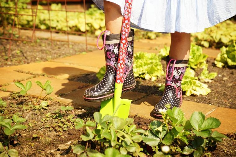 tierra cultivar plantas huertos niá
