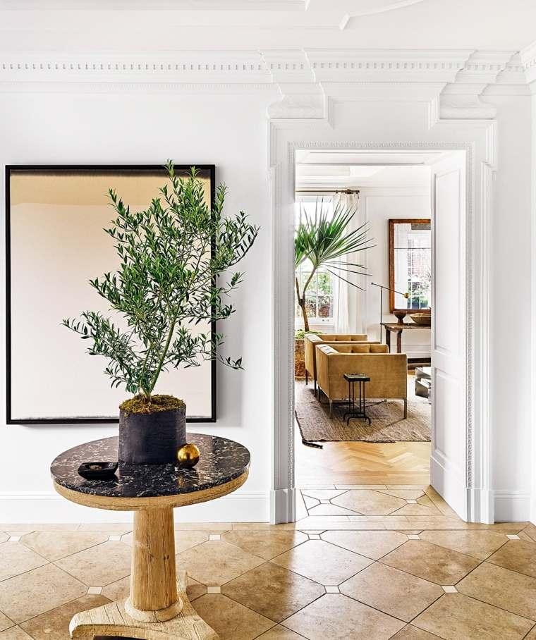 arboles pequenos entrada casa moderna ideas