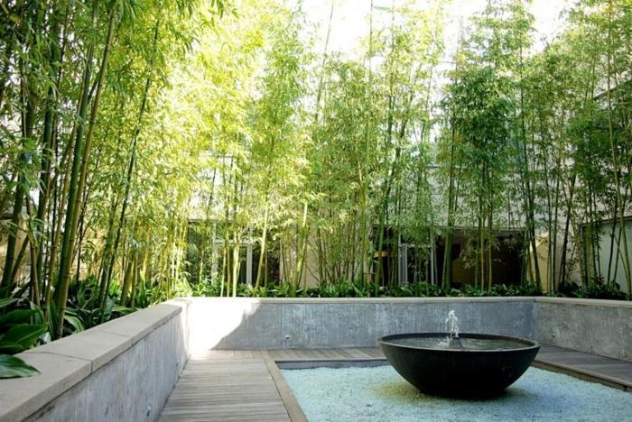 bambu colores espacios frescos fuentes