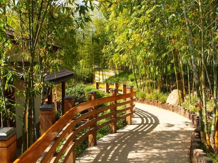 bambu estilos maderas contrastes lamparas
