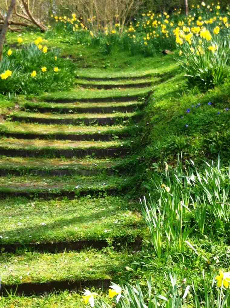 bonitas escaleras verdes con césped