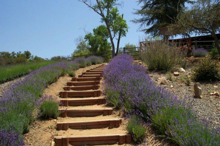 bonitas escaleras madera jardin romero