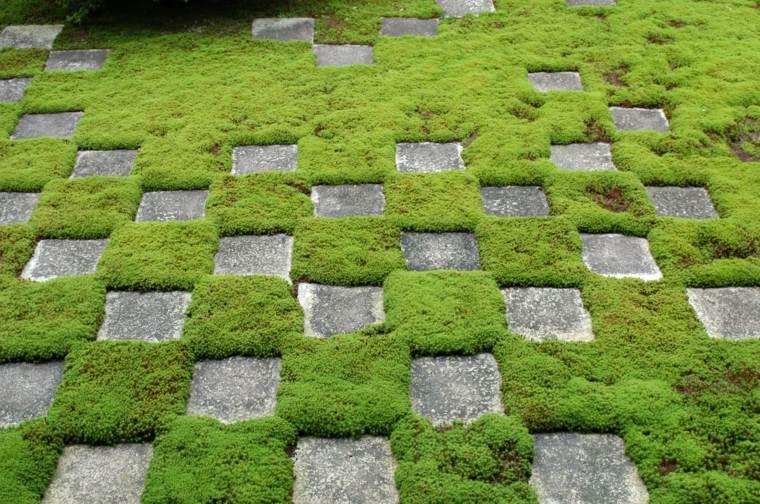 Plantas y flores perfectas para cubrir el suelo de tu jard n for Suelos de hormigon para jardin