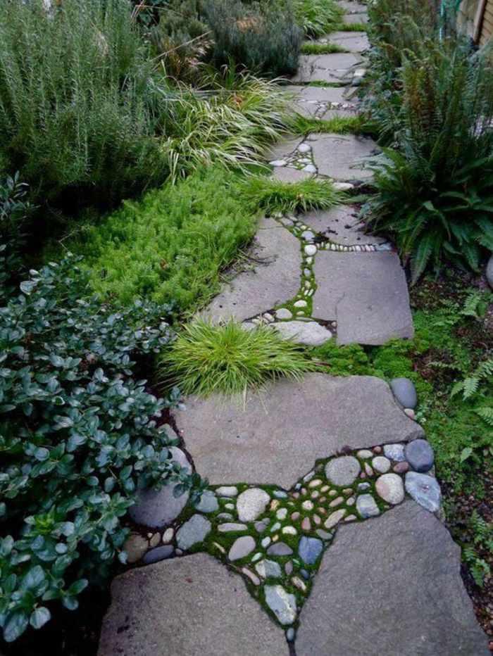 combinacion rocas tamanos diferentes plantas