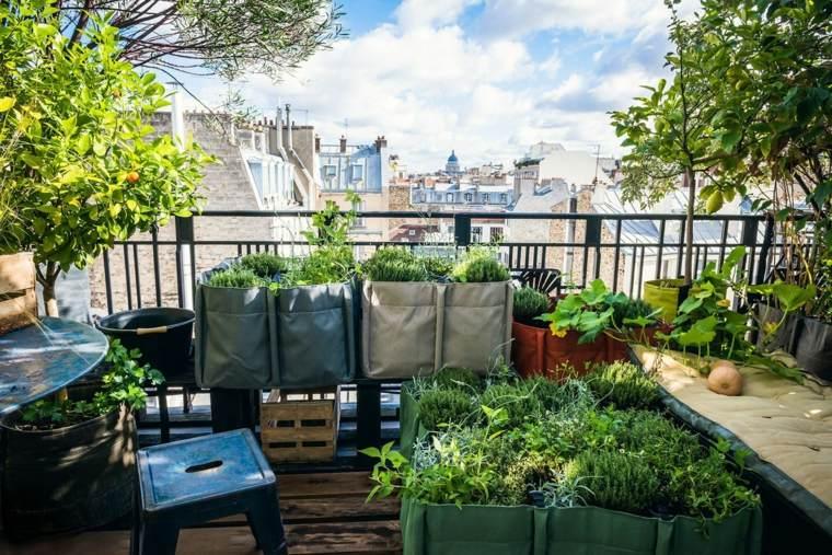 decoracion de terrazas diseño plantas frutas banquetas
