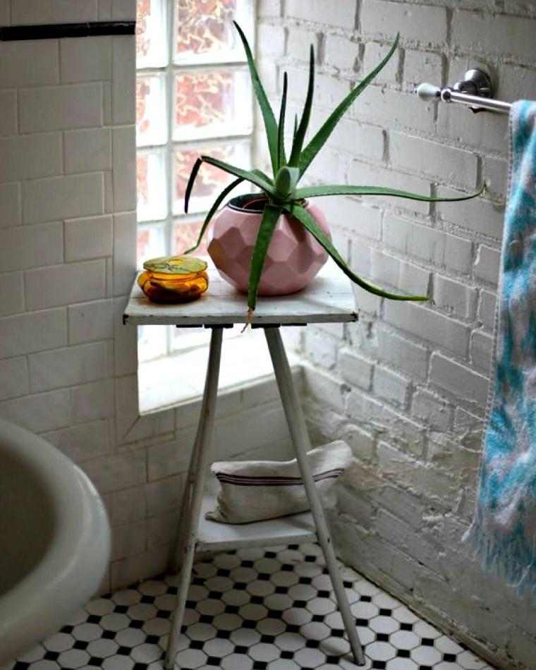 decorar con plantas opciones aloe vera bano ideas