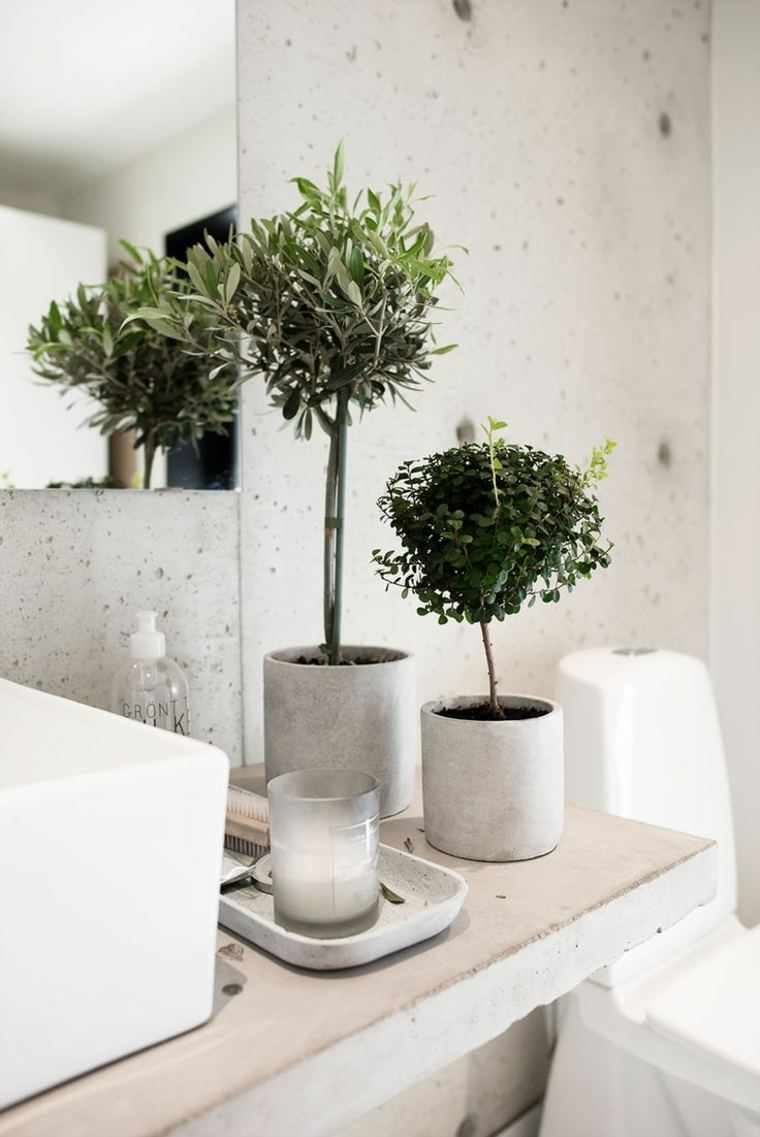 decorar con plantas opciones bano moderno macetas ideas