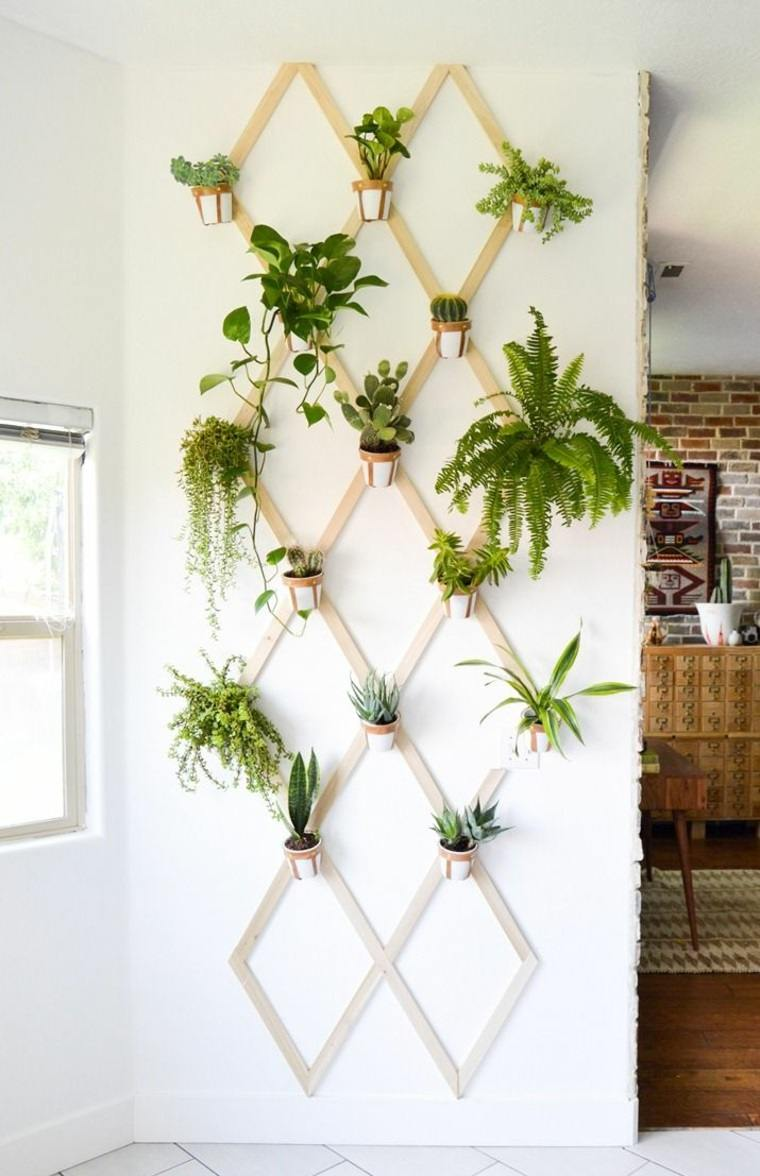 decorar con plantas opciones colgando pared ideas
